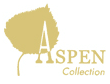 Aspen wig's and hairpieces